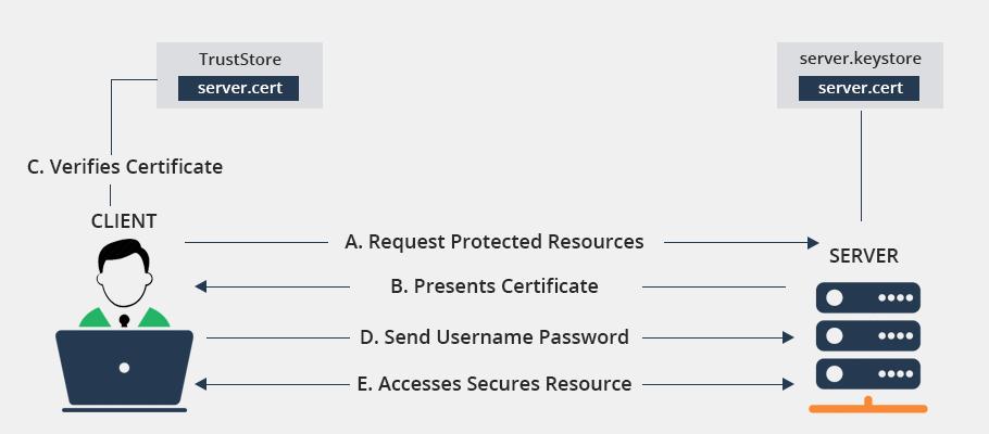 Avoid Risks Of Login Form Attacks with SSL