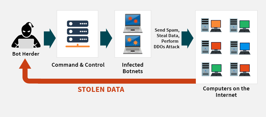 how ddos and botnets can influence network severely