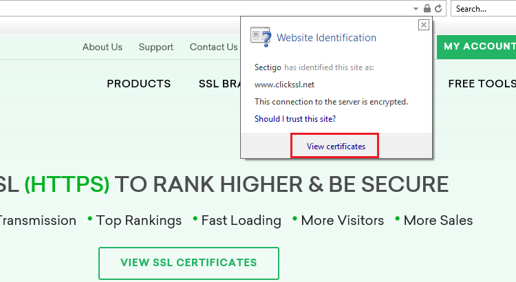 how to view ssl certificate details in internet explorer