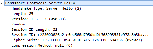 server hello handshake protocol